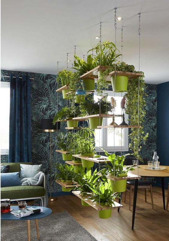 les plantes salle à manger